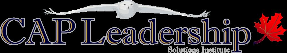 CAP Leadership Solutions Institute